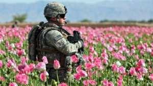 امریکا و غرب کشتزار های مواد مخدر را با خون افغانها آبیاری میکنند