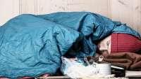 بحران سوءتغذی در انگلستان، پنجمین اقتصاد بزرگ جهان