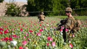 تریاک افغانستان در لابراتوارهای ترکیه به هیرویین بدل میشود